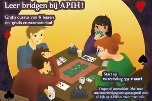 bridge_poster_petra_van_berkum