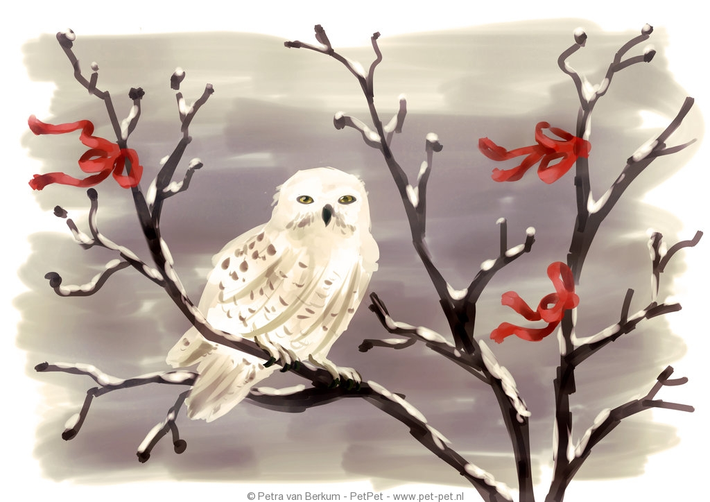 snowy_owl_by_neesha-d5lo5p5